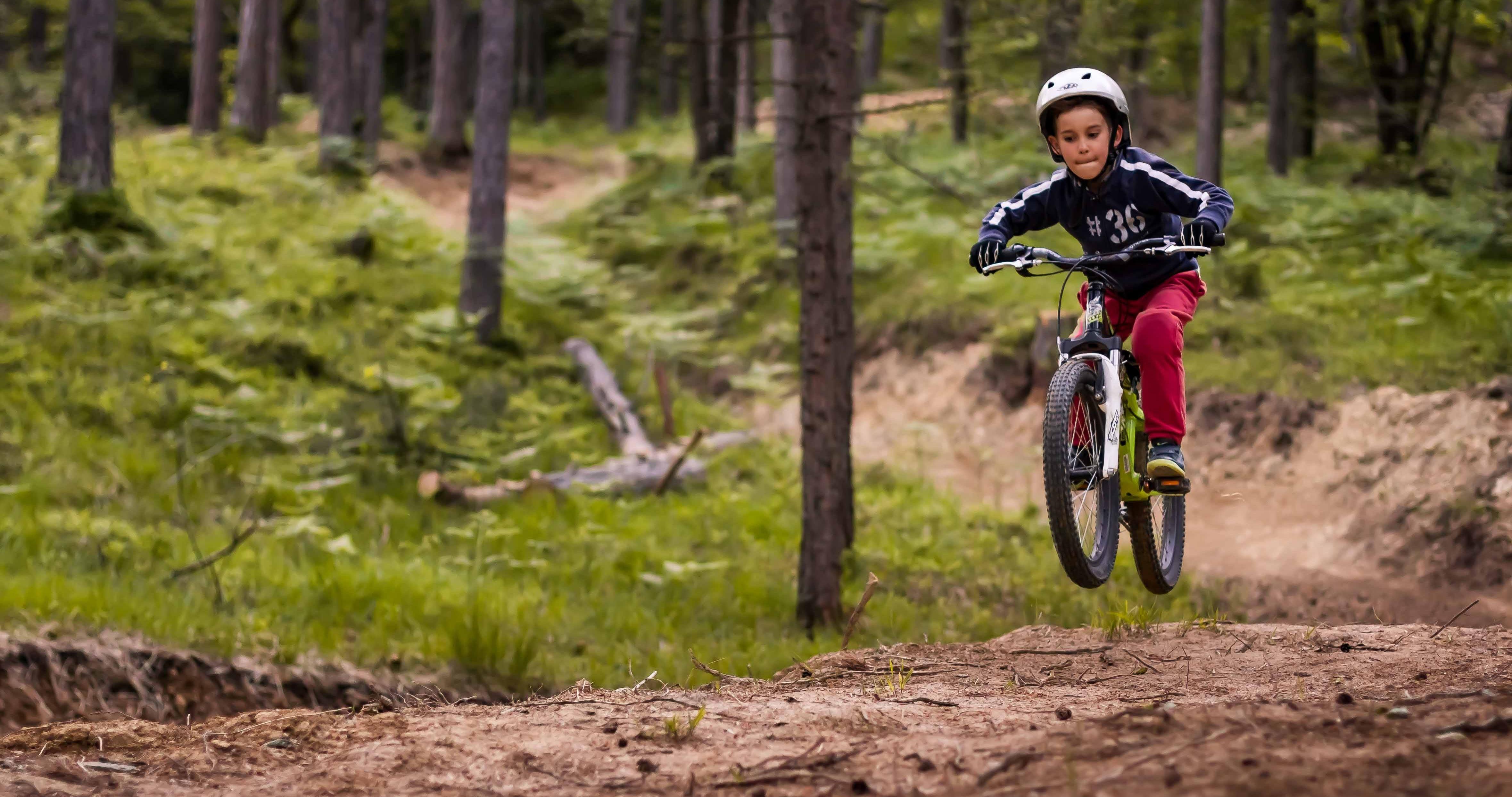 Trilči trail